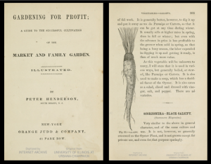 Screenshot combining the aged title page of Henderson's Gardening for Profit on left and, on right, a page containing text on salsify accompanied by a drawing of the root vegetable.